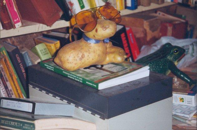 Retour for Chambre commerciale 13 octobre 1998
